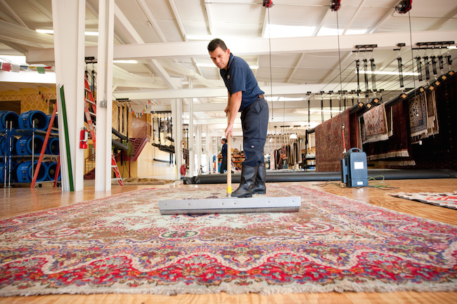 technician grooming area rug