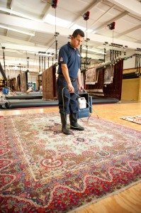 rug protector can be applied after the cleaning process
