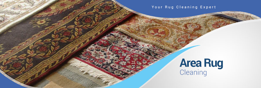 Area Rug Cleaning in Bedford, TX