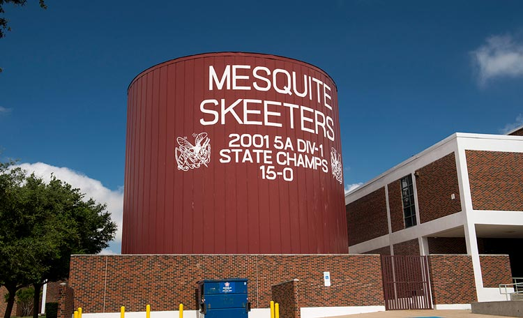 A Mesquite Skeeters state championship display